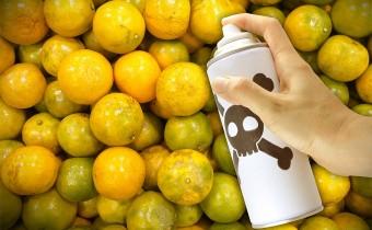 pesticides coverup