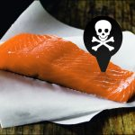 Toxic Farmed Salmon